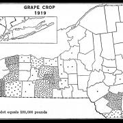 Map of New York State Showing the Grape Crop of 1919.