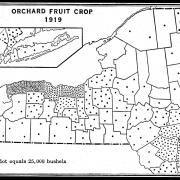 Map of New York State Showing Orchard Fruit Crop in 1919.